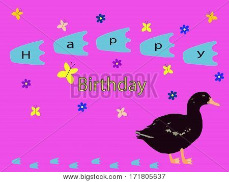 black duck with grey stains and footprints