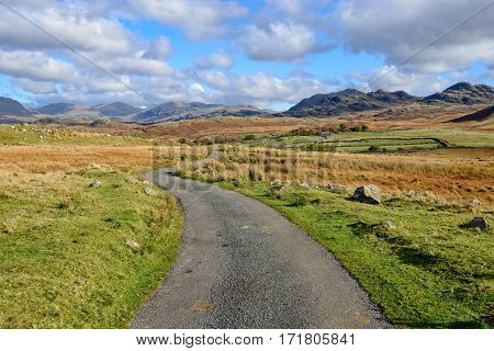 Lane Leading To Mountains