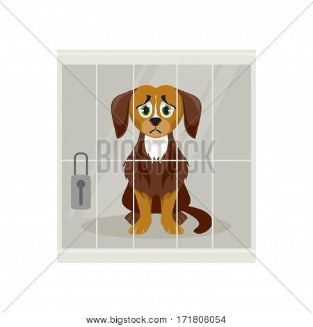 Sad homeless dog at the shelter. The animal control. Vector illustration