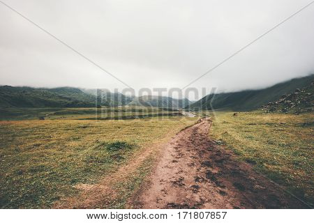 Foggy Mountains road Landscape summer Travel serene scenery wild nature calm misty view minimal style