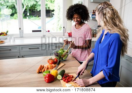 Happy female friends preparing food at table in kitchen