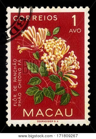 Macau - circa 1953: A stamp printed in Macau shows honeysuckle flowers, chinese honeysuckle, circa 1953