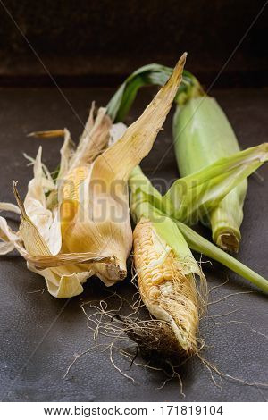 Corn Cobs With Leaves