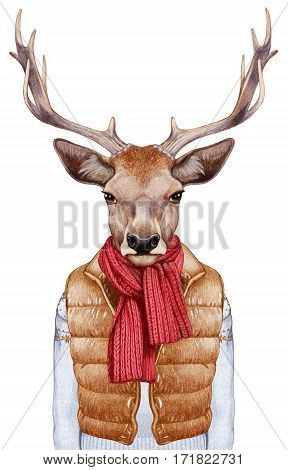 Animals as a human. Portrait of Deer in down vest, sweater and scarf. Hand-drawn illustration, digitally colored.