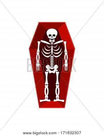 Skeleton In Coffin Isolated. Religion Illustration. Human Death