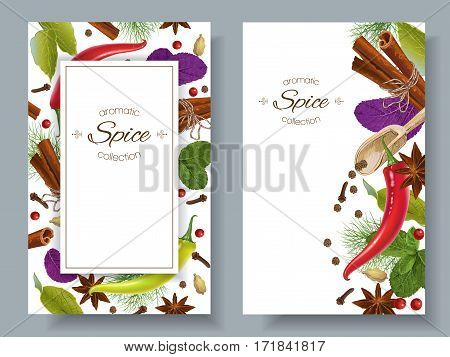 Vector spice vertical banners with various seasonings on white background. Red chili peppers, bay leaves, cinnamon and other spices. Design for packaging, spice shop, recipe web site, cooking book