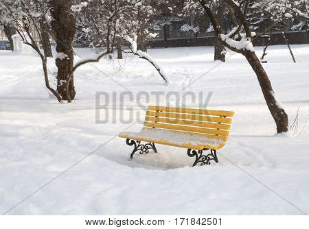 Yellow bench in the winter snowbound park