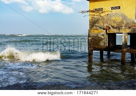 House On Stilts In The Open Sea. Solitary Tree Grown In The