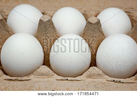 Close-up of eggs in a box. Fresh eggs