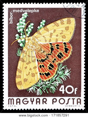 HUNGARY - CIRCA 1974 : Cancelled postage stamp printed by Hungary, that shows Butterfly.
