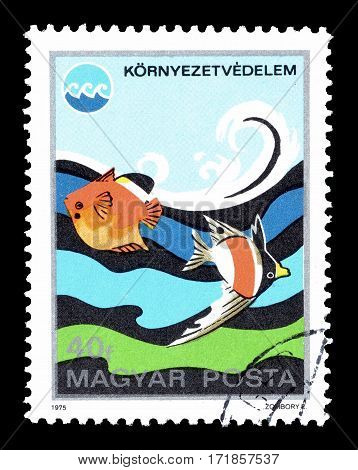 HUNGARY - CIRCA 1975 : Cancelled postage stamp printed by Hungary, that shows Fish.