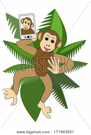 Cute funny monkey making selfie in the crown of a palm tree illustration for children