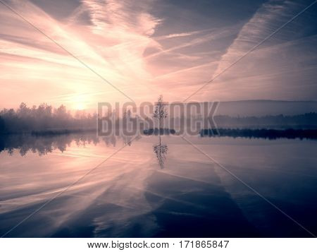 Grass on mountain lake bank,  island in middle. Purple morning with peaceful water level in mysterious forest. Fresh green color of herbs and grass, heavy clouds in sky.