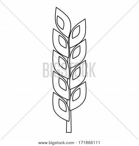 Grain spike icon. Outline illustration of grain spike vector icon for web