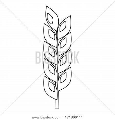 Grain spike icon. Outline illustration of grain spike vector icon for web