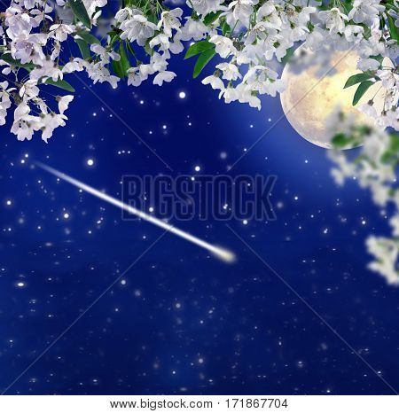 Spring night in cherry garden. Falling meteor on a dark blue night sky. Astronomy. Romance. Relax in the garden. Contemplating the beauty of nature and the cosmos.