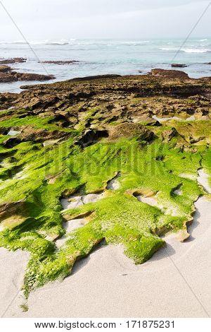 In South Africa   Sky Ocean    Reserve