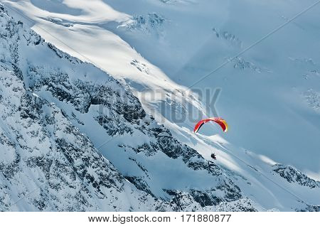 Paraglider flies in the snowy mountains.Winter background