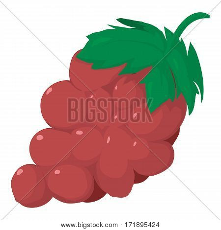 Grape icon. Cartoon illustration of grape vector icon for web