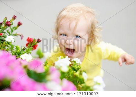 Funny Curly Hair Toddler Girl Smelling Red Flowers At The Spring Or Summer Day