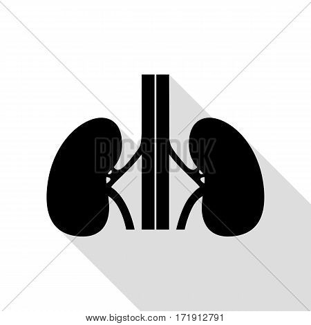 Human kidneys sign. Black icon with flat style shadow path.