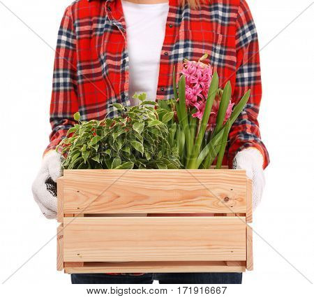 Female florist holding wooden box with house plants on white background