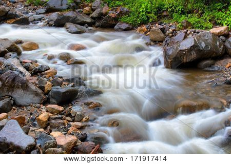 Long exposure of fast flowing stream in Manu National Forest Peru