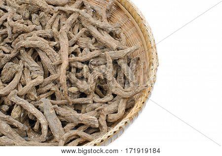 Thai herb scientific name Angelica sinensis (Oliv.) DielsAngelica polymorpha Maxim. var. sinensis Oliv.Umbelliferae