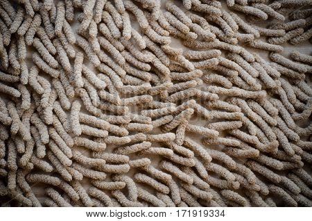 Doormat carpet mat texture background, top view