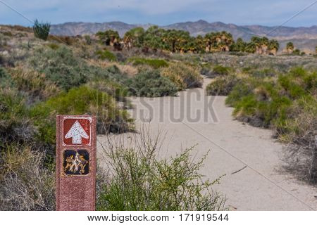 A sign points the way to an oasis in the desert