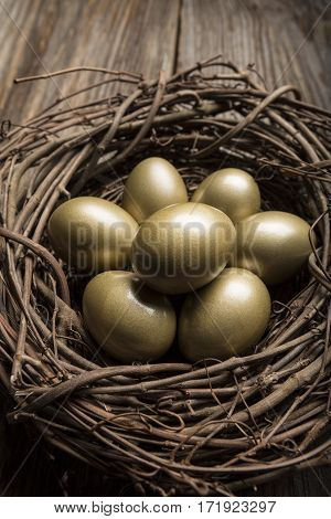 Financial Nest Egg and Building Additional Wealth and financial planning and golden eggs