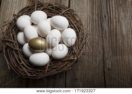 Financial Success finding the Golden Egg and standing out from the crowd  in a nest
