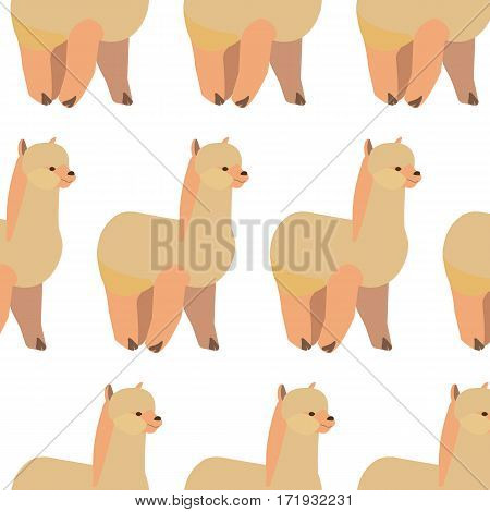 Seamless pattern with llama Alpaca .Vector flat for print.