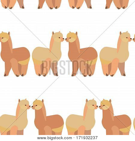 Seamless pattern with llama Alpaca .Vector flat for print. Vector cute Alpaca llama animal.