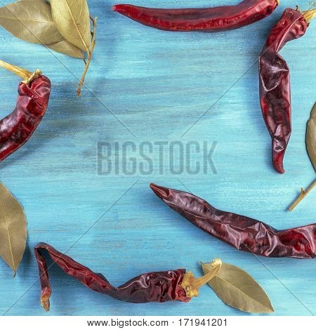 A square photo of chili peppers and bay leaves on a vibrant turquoise background texture, forming a frame for copyspace. Restaurant menu or special offer banner design template