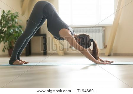 Young attractive woman practicing yoga, doing adho mukha svanasana exercise, Downward facing dog pose, working out wearing grey sportswear, indoor full length home or sport club background, copy space