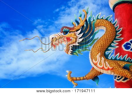 Giant golden Chinese dragon icon of china and chinese new year in temple.