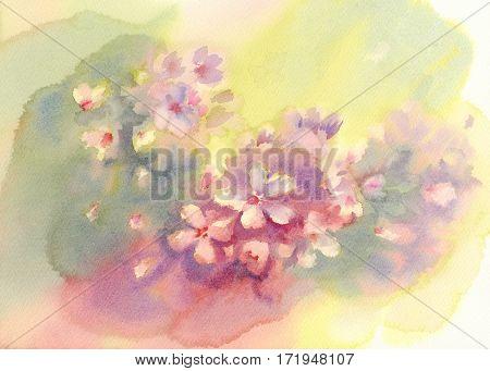 Sakura bloom watercolor background. Spring flowering. Pastel colors
