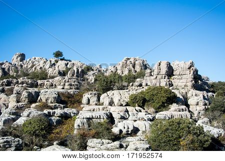 A landscape with wild goats mountains of El Torcal in Andalusia Spain.