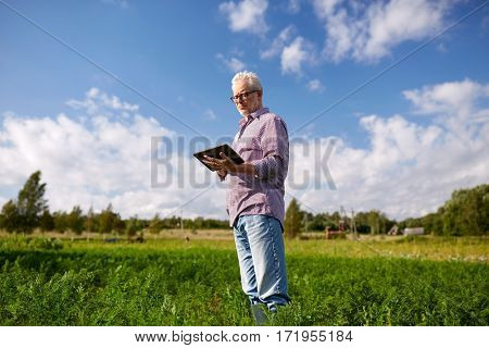 farming, agriculture, technology and people concept - senior man with tablet pc computer at county or farm