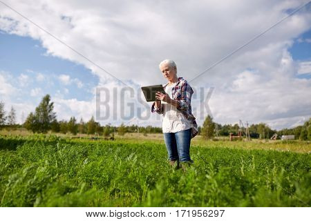 farming, agriculture, technology and people concept - happy senior woman with tablet pc computer at county or farm