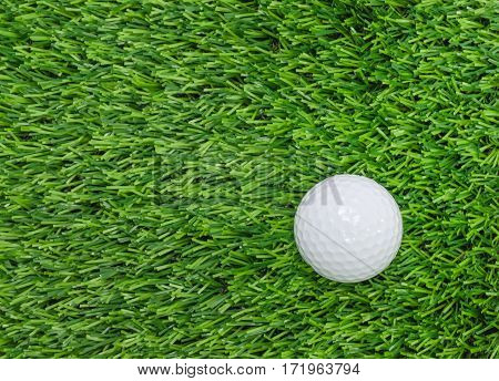 Golf Ball On Green Grass.