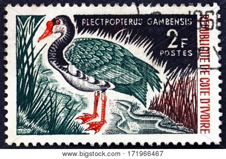 IVORY COAST - CIRCA 1966: a stamp printed in Ivory Coast shows Spur-winged goose plectropterus gambensis is a large bird circa 1966