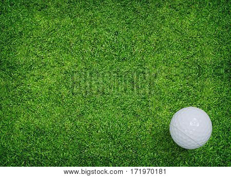 Golf ball on green grass of golf course.