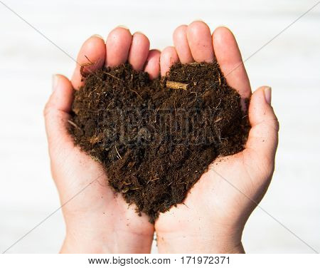 Hands Holding An Earth Heart On White Background. Ecology Concept