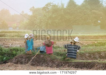 Scarecrows Like An Image For A Man Wearing A Hat