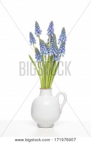 Bouquet of blue Grape hyacints in a white vase on a white shelf