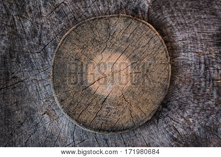 Sawed wooden stumps with cracks texture . Texture background
