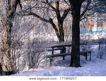 the landscape in the city table and a bench in the courtyard under the trees