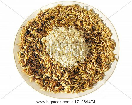 oat grains with oat product in the plate